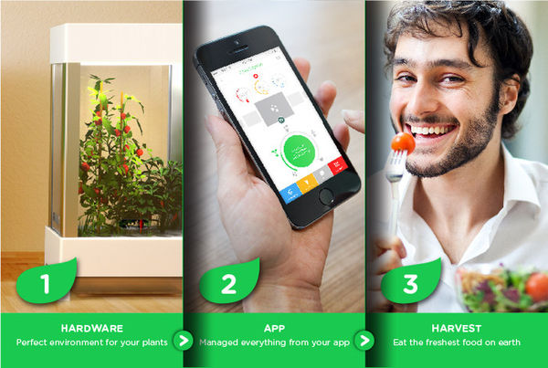 App-Connected Home Gardens (UPDATE)
