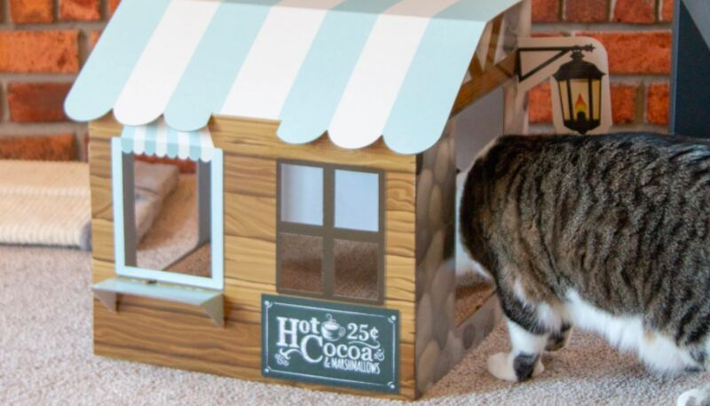 Subscription-Based Cat Homes