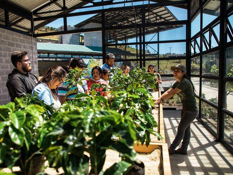 Coffee-Farming Centers