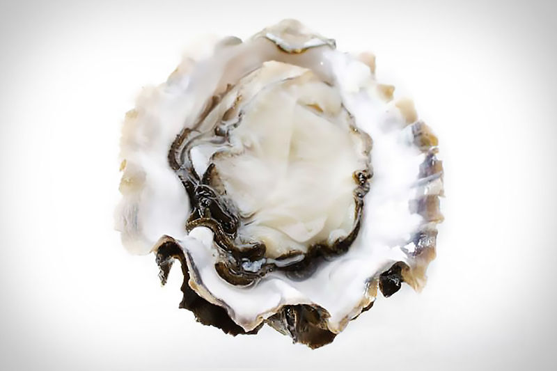 Direct-to-Consumer Oyster Deliveries