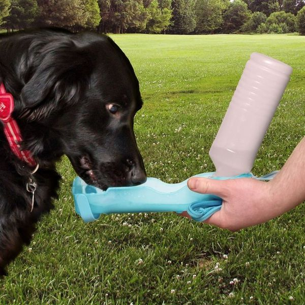 Spill-Proof Dog Feeders