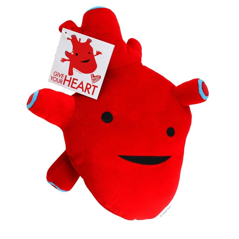 Anatomic Heart-Shaped Plush Toys