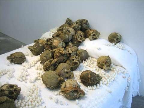 Skeletal Art Exhibits