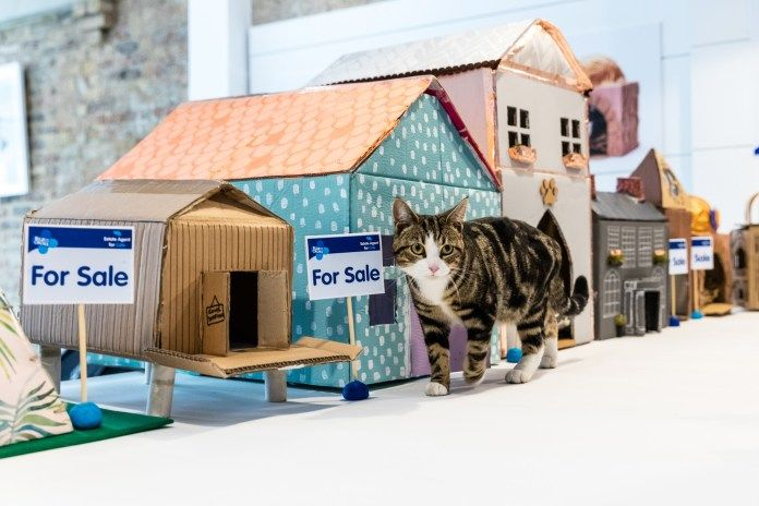 Pet Housing Pop-Ups