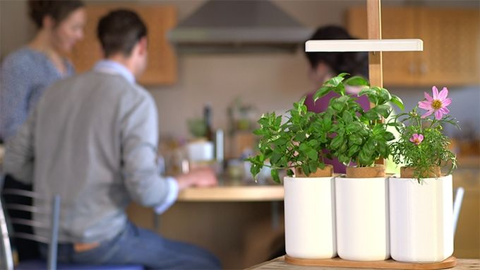 High-Tech Herb Planters