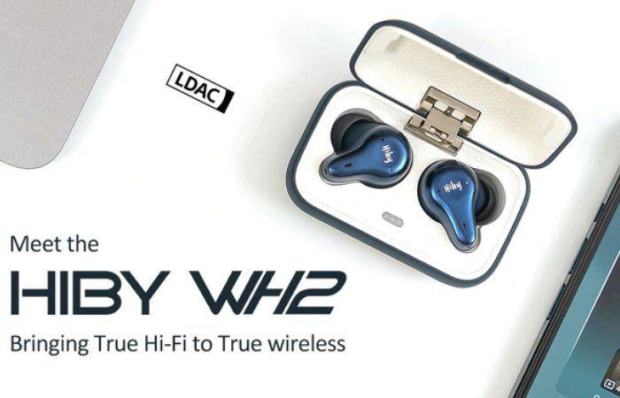 Mini HiFi Audio Earbuds