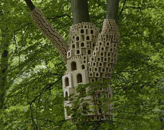 Avian Apartments