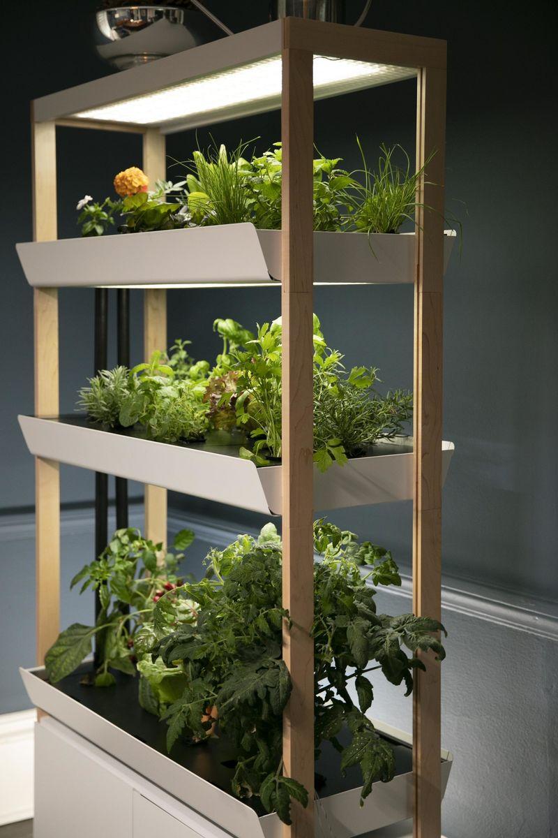 Three-Level Indoor Gardens
