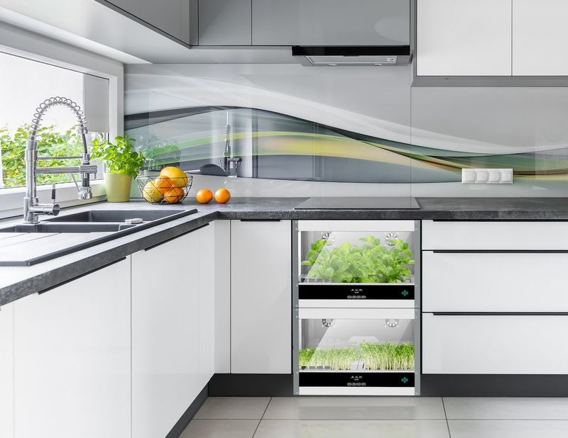 Veggie Growing Kitchen Appliances