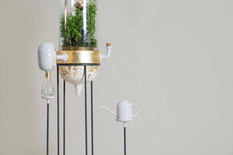 Terrarium Water Purifiers