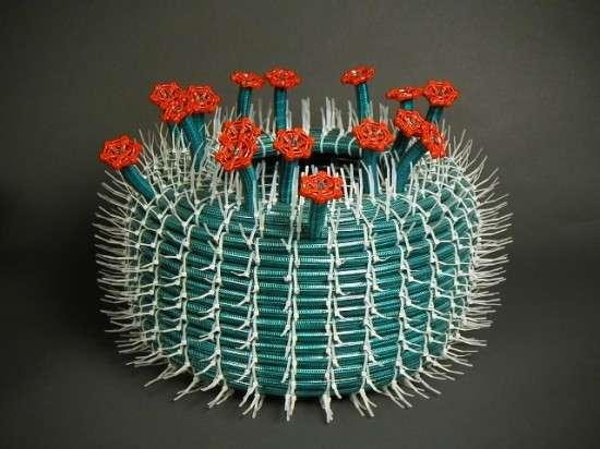 Gardening Equipment Cacti
