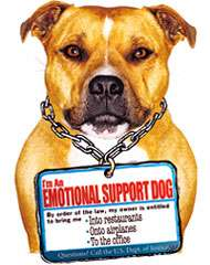 "Hotels / Airlines Forced to Accommodate Pets As ""Emotional Support"""