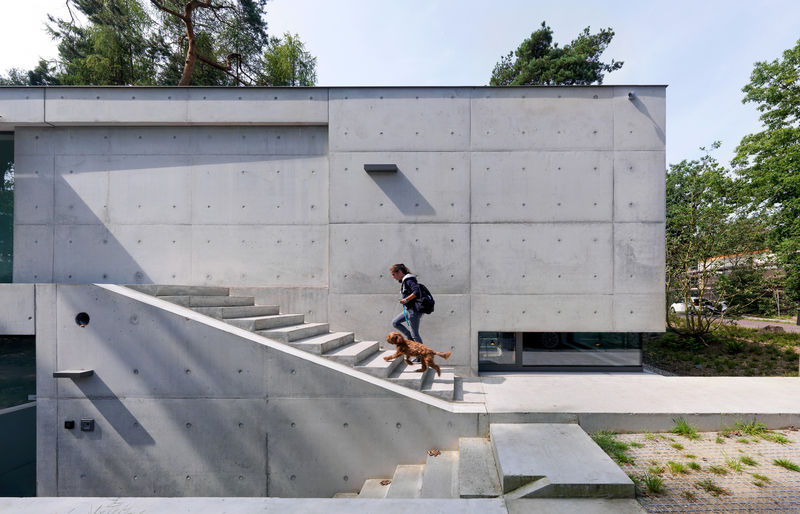 Protective Concrete Forest Homes