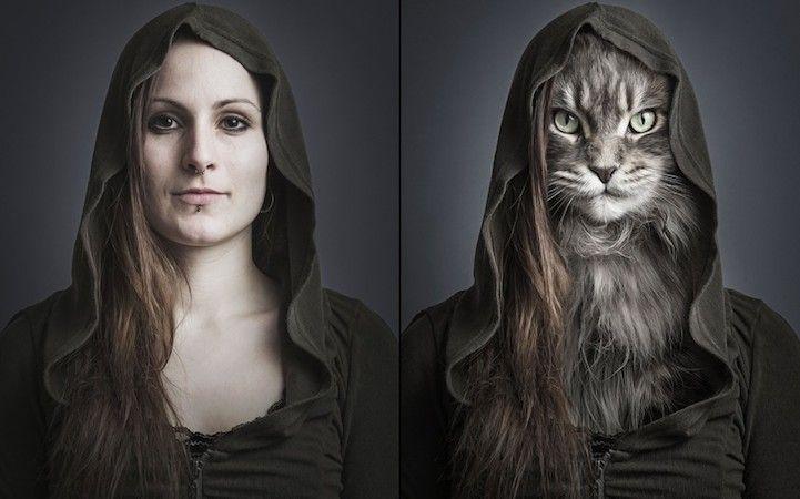 Feline Fashion Trend