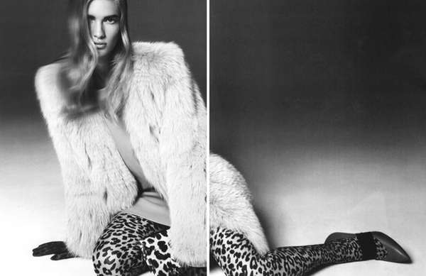 Laid-Back Leopard Editorials
