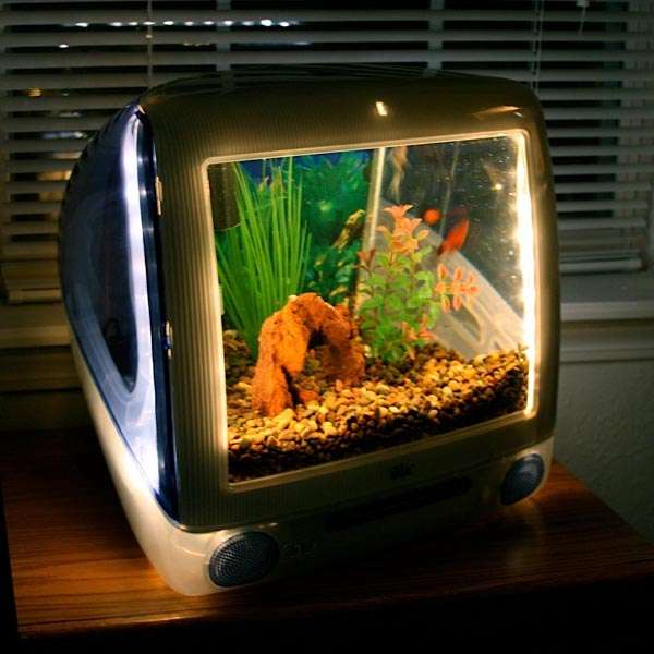 Upcycled computer fish tanks imac imacquarium for Desktop fish tank