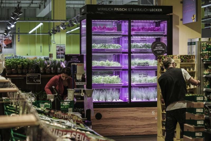 In-Store Farming Initiatives