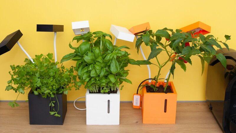 Customizable Indoor Smart Gardens