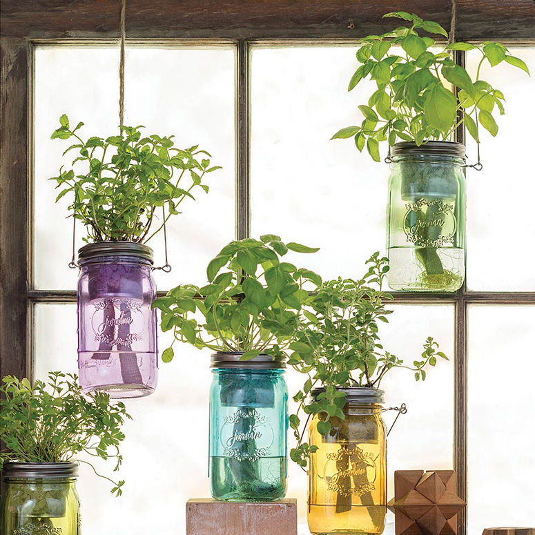 Self-Watering Herb Gardens
