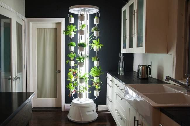 Superior Luminous Vertical Gardens