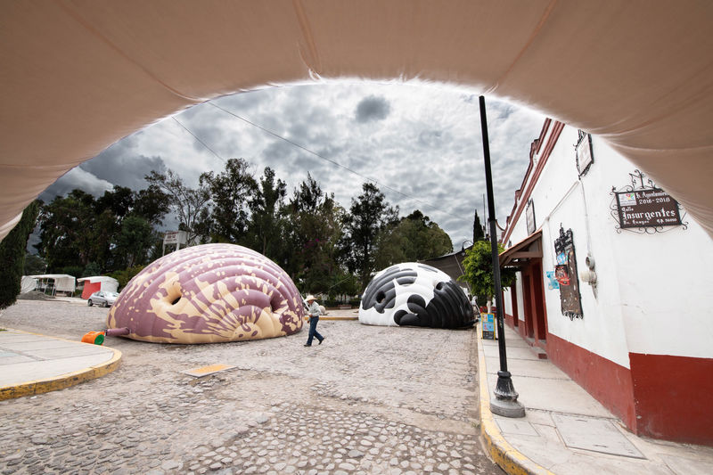 Bean-Like Inflatable Structures