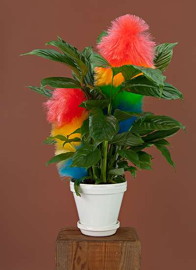 Illusory Product-Inspired Plants