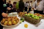 Eco Catering Projects
