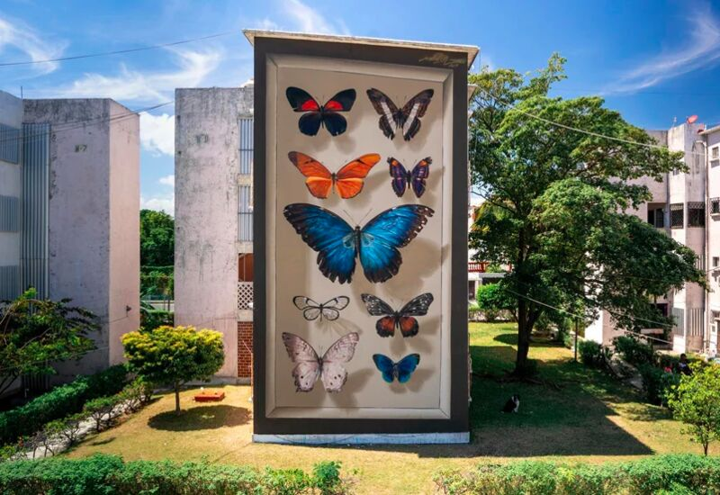 Butterfly Display Case Murals