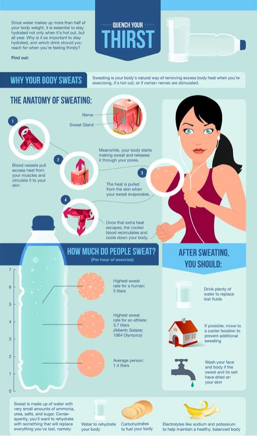 Dehydration Prevention Infographics