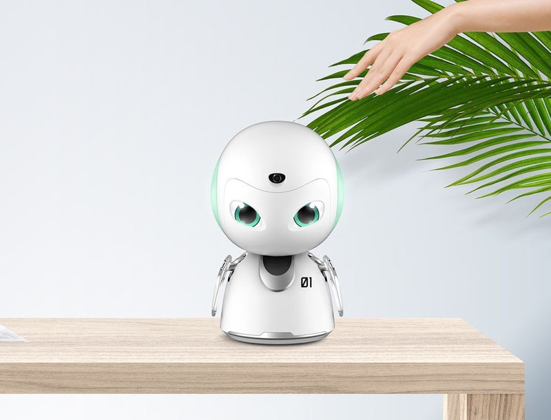 IoT-Connected Home Robots