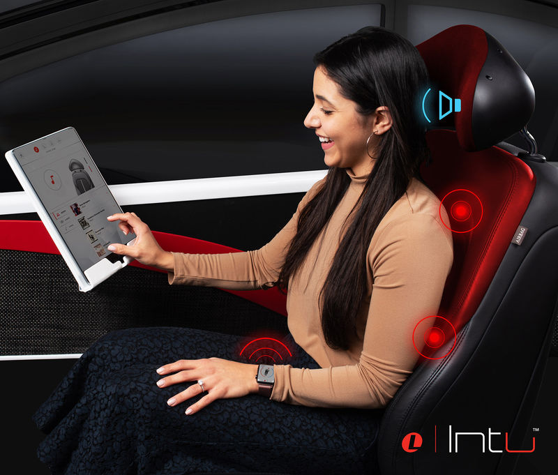 Customizable Car Seating Systems