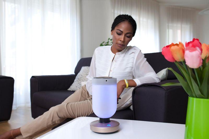 Robotic Home Security Hubs