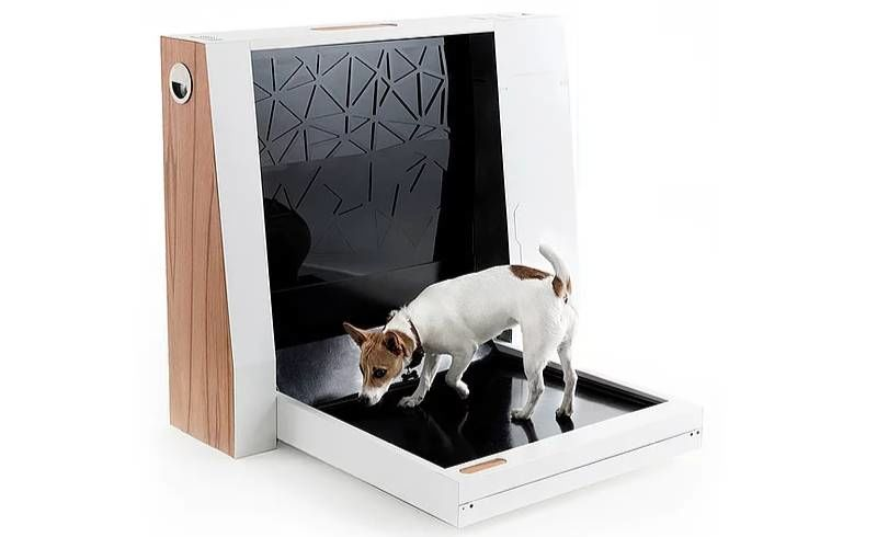 Automated Canine Toilets