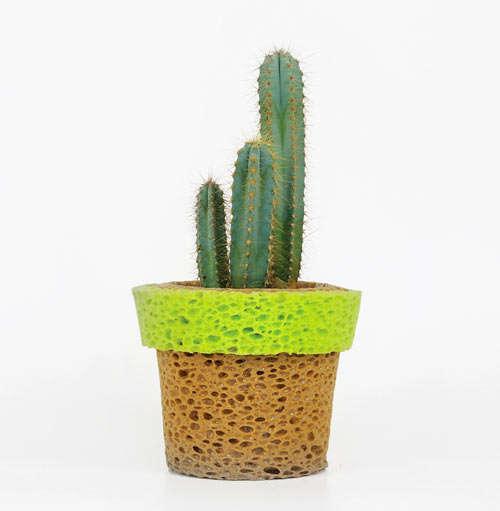 Vibrant Spongy Vases