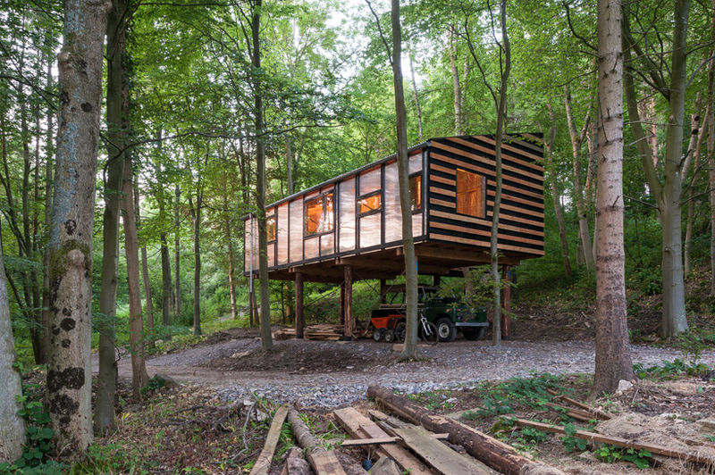 Forest-Clad Office Spaces