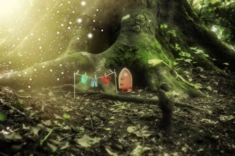Imaginative Fairy Tale Accessories : Irish Fairy Door Company House Of Playing Cards