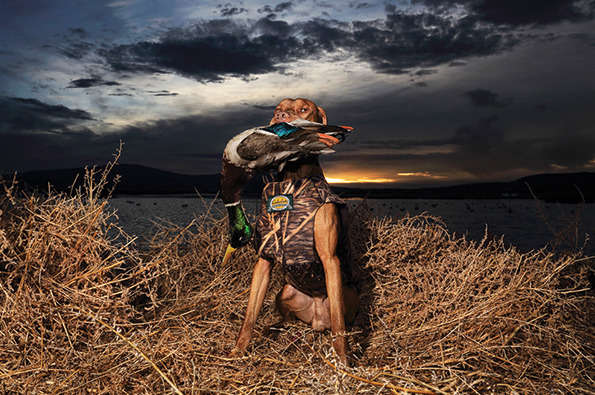 Modern Hunting Photography