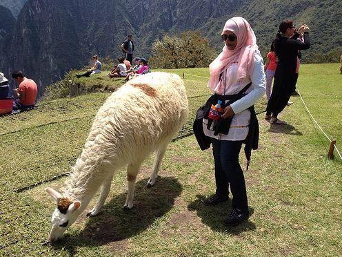 Muslim Machu Picchu Tours