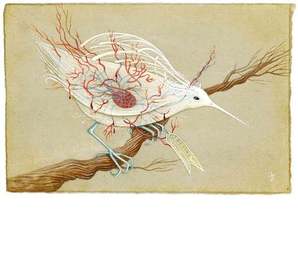 Translucent Avian Art