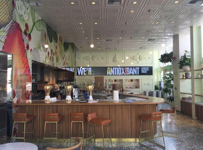Plant-Based Concept Cafes