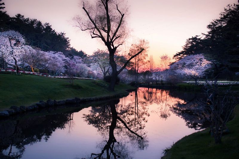 Japanese Landscape Photography