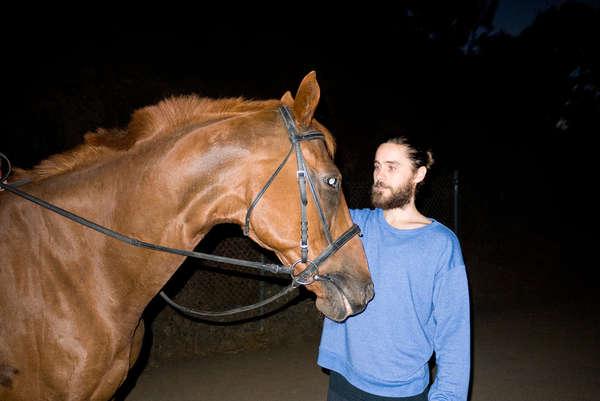 Bizarre Equestrian Photoshoots