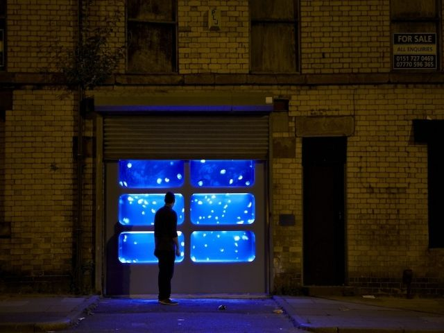 Surrealist Storefront Aquariums