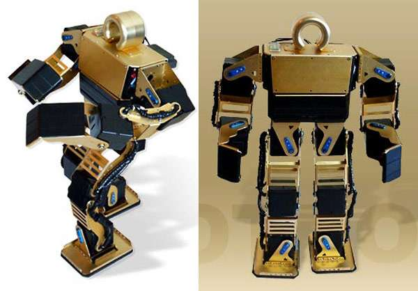 Suggestive typewriter robots the nude iv delilah robot is a diy robot kits solutioingenieria Gallery