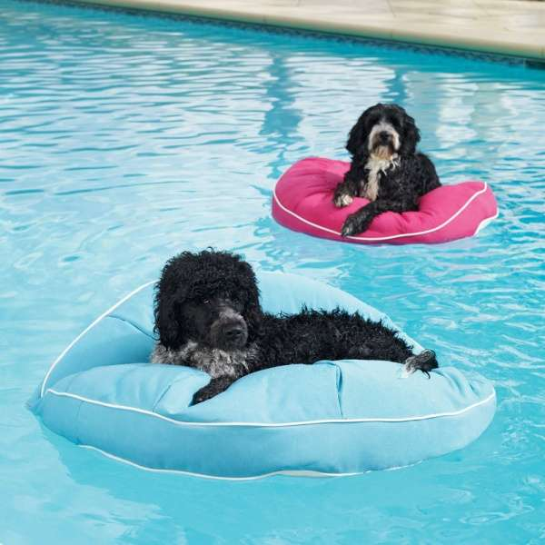 Cuddly Canine Water Wafts The Kai Pet Pool Floats Give