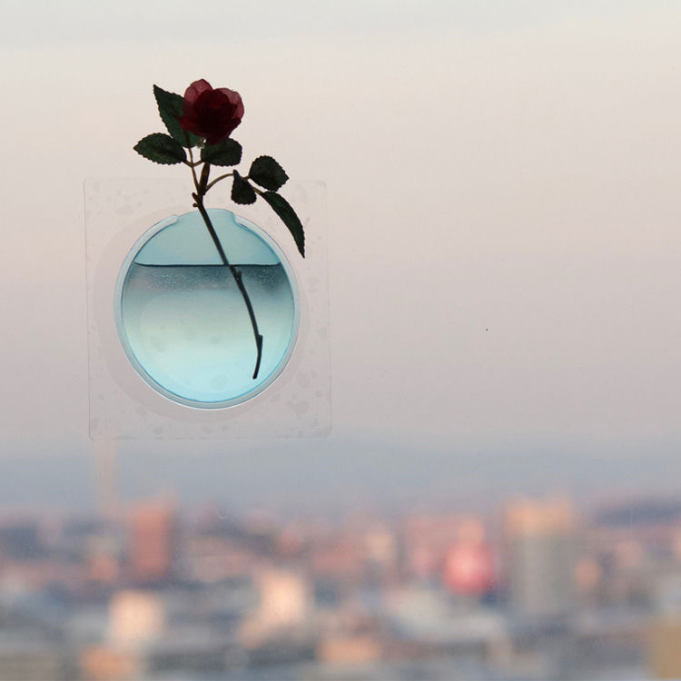Floating Floral Window Vases
