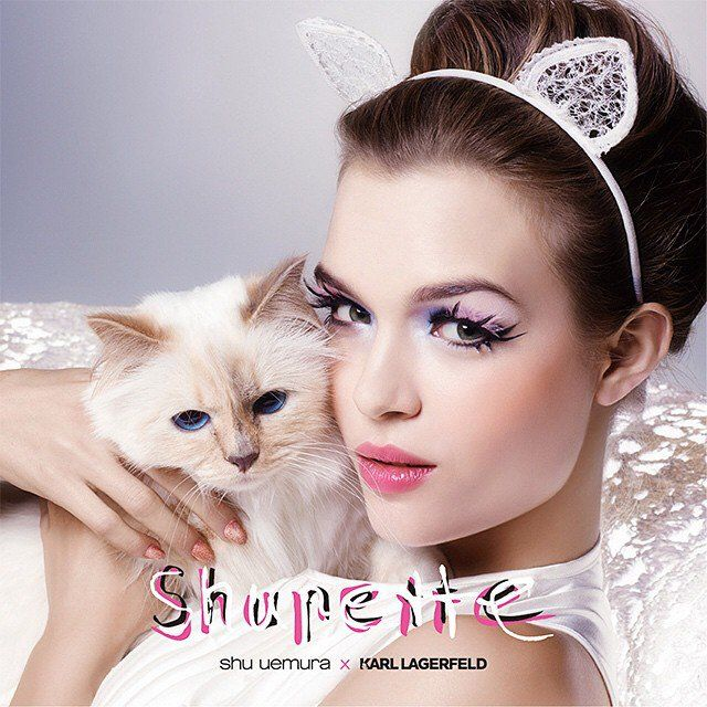Cat-Inspired Cosmetic Collections