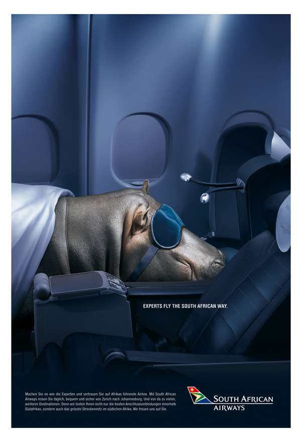 Animal Airplane Ads