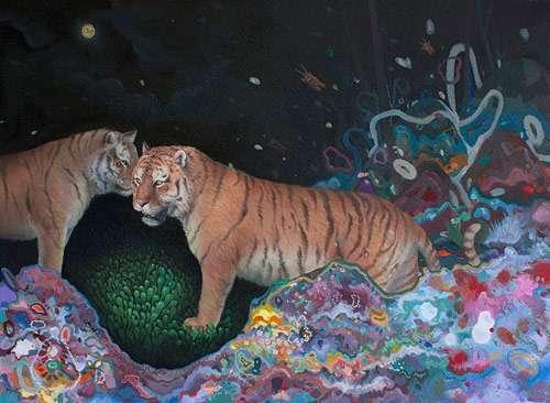 Whimsical Wildlife Illustrations