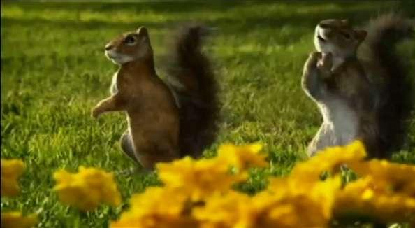 Singing Squirrel Commercials